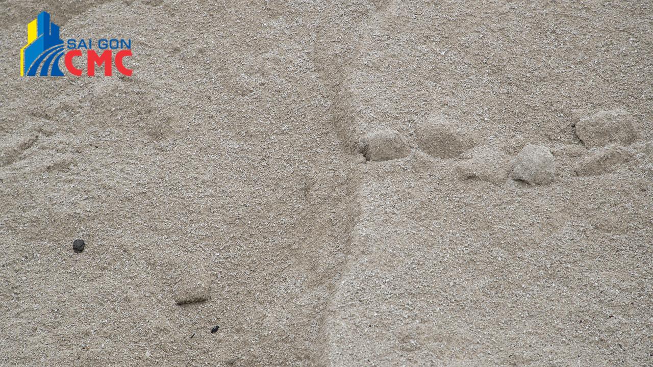 Phân phối cát xây tô giá rẻ